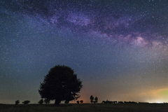 Lonely tree in the Milky Way Stock Photo