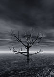 Lonely tree. Night. 3 d graphics night fantasy landscape with lonely tree Stock Photo