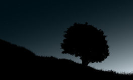 Lonely tree at night illustration Stock Images
