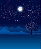 Lonely tree in night landscape.Vector blue illustr Stock Images