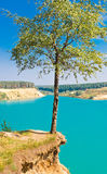 Lonely tree over blue lake on sky background. Landscape with lonely tree over blue lake on sky background, Blue Lake, Russia, East Europe stock photos