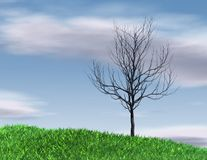 Lonely tree silhouette on blue sky background Royalty Free Stock Photography