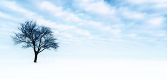 Lonely tree in snow Stock Photography
