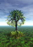 Lonely tree, summer. 3 d graphics fantasy landscape with lonely tree Royalty Free Stock Photos