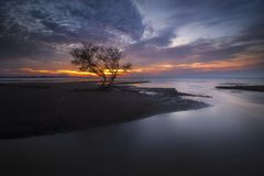 Lonely Tree and Sunset Royalty Free Stock Photography
