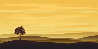 Lonely tree in the sunset Royalty Free Stock Image