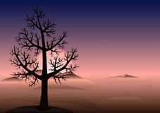 Lonely tree. Sunset. Mountains in fog. Vector Background. Royalty Free Stock Photos