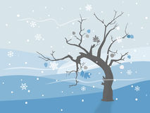 Lonely tree in winter landscape. Lonely tree in winter with frozen leafs Royalty Free Stock Photography