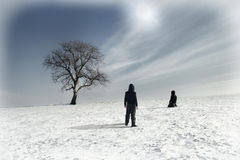 Lonely tree in winter and two people Stock Photos