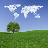 Lonely tree and world map clouds. World map made with clouds, over a green field with a lonely tree. Square format Stock Photo