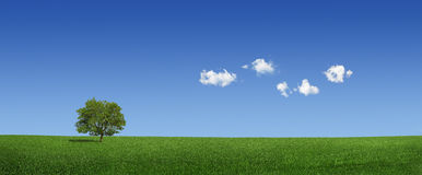 Lonely tree and world map clouds (XXXLarge) Royalty Free Stock Image