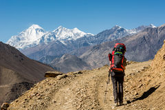Lonely trekker walking on desert road. Royalty Free Stock Photography