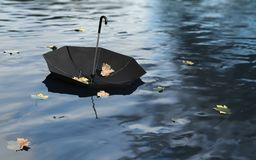 Umbrella on the Water Surface. Black umbrella on the water surface Vector Illustration