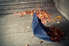 Lonely umbrella. Opened umbrella lying on the floor with red and yellow leaves around Royalty Free Stock Photos