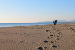 Lonely at the Velika Plaza - Great Beach (Montenegro, winter) Royalty Free Stock Image