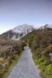 Lonely walk path in paradise places in South New Zealand / Mount Cook National Park. Aoraki Mount Cook National Park [1] is dominated by the peaks of Aoraki Royalty Free Stock Image