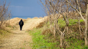 Lonely walk in Tottori Royalty Free Stock Images