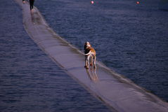 Lonely walk on the water Royalty Free Stock Image
