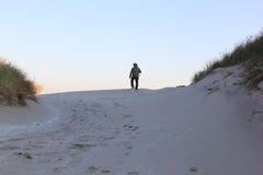 Lonely walker in Ameland dunes, Netherlands royalty free stock photography