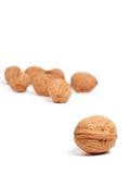 Lonely walnut. A single walnut in focus and several out-of-focus walnuts in the background stock photography