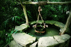 Lonely water wet. You can see artesian spring with wooden bucket royalty free stock photo