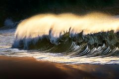 Lonely wave breaking at beach. Shore royalty free stock photos