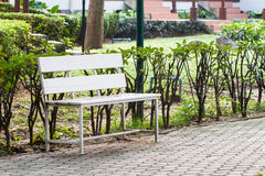 Lonely white bench Stock Images