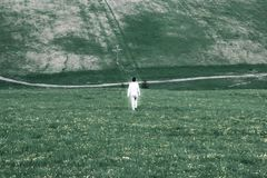 A lonely white glowing figure of a man walks through a gloomy gr. Een field, the concept of the transition of the soul into the afterlife Stock Photos