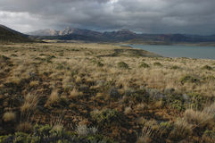Lonely Windswept Patagonia. Chilly and windswept glacial lake of Argentinian Patagonia Stock Photography