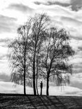 The Lonely Winter Tree Stock Photography