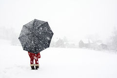 Lonely in the winter wonderland Royalty Free Stock Photos