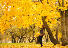 Lonely woman having rest under the yellow tree in a foggy autumn day Stock Photography
