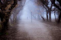 Lonely woman leaning on lamp post in central park alley on foggy. Autumn day, sinister and mysterious Stock Photography