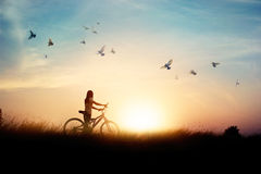 Lonely woman standing with bicycle on road of paddy field. Among flying birds and sunset background Stock Images