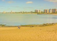 Lonely Woman Sunbathing in a Beach of Punta del Este Stock Photos