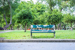 Lonely wooden bench Stock Image