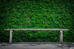Lonely wooden bench in the park Royalty Free Stock Images