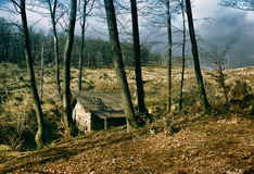 Lonely Wooden Cottage Royalty Free Stock Photos