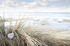 Lonely wooden heart on beach dunes Stock Photo