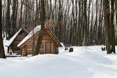 Wooden houses in snow at winter morning. Lonely wooden houses in a deep forest covered with snow Royalty Free Stock Photography