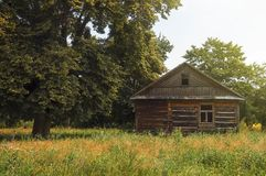 A lonely wooden hut on the meadow Stock Photo