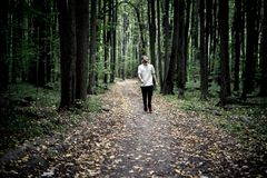 Lonely young male hipster in casual walks in autumn dark moody forest with fallen leaves royalty free stock photo