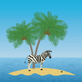 Lonely zebra on the island with a palm tree Royalty Free Stock Photos