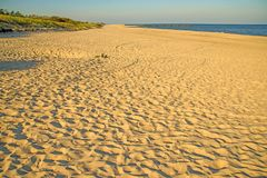 Lonesome beach of the Baltic Sea Royalty Free Stock Images