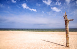 Lonesome beach of the Baltic Sea Royalty Free Stock Photography