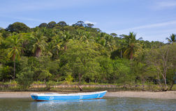 Lonesome fishing boat in the amazon of brazil with palm trees. Royalty Free Stock Photography