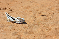 A lonesome lost shoe Royalty Free Stock Photos