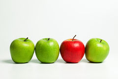 Lonesome red apple Stock Photography