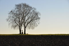 Lonesome trees with cross Royalty Free Stock Photography