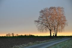 Lonesome trees with cross at sunrise Stock Image